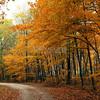 Autumn in Ohio!